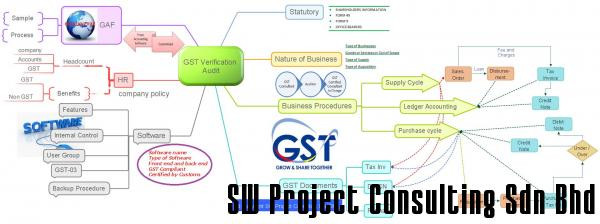 GST Verification Audit